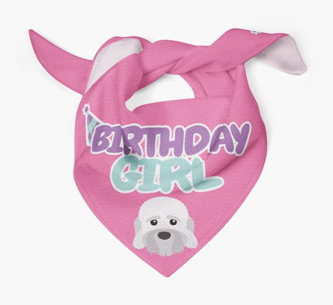 'Birthday Girl' Bandana with Dandie Dinmont Terrier Icon