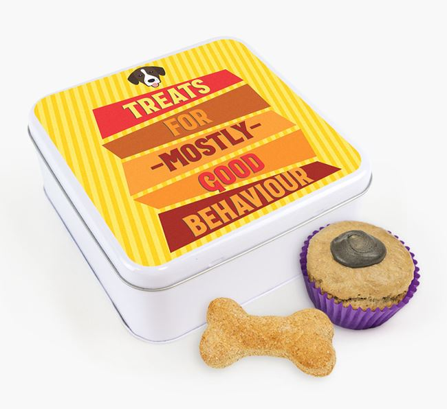 'Treats for Mostly Good Behaviour' Square Tin with Springador Icon
