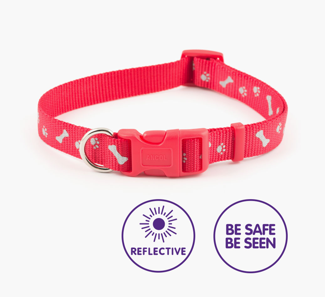 Reflective {colour} Paw and Bone Poodle Collar