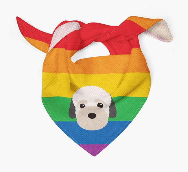 Colorful Rainbow Bandana with Bich-poo Icon