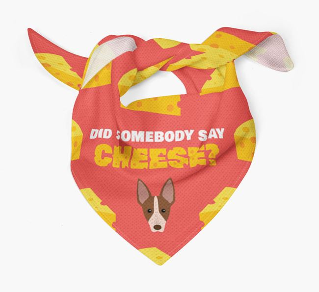 Cheese Bandana with American Hairless Terrier Icon