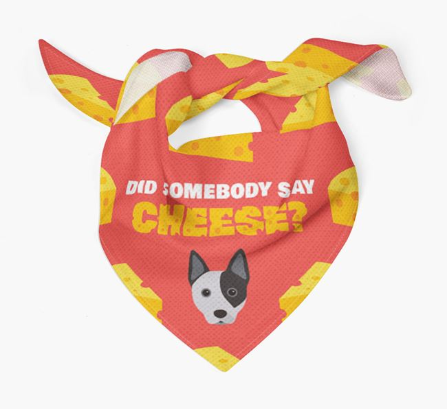 Cheese Bandana with Australian Cattle Dog Icon