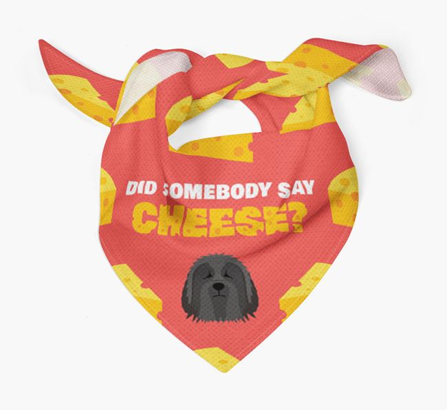 Cheese Bandana with Bearded Collie Icon