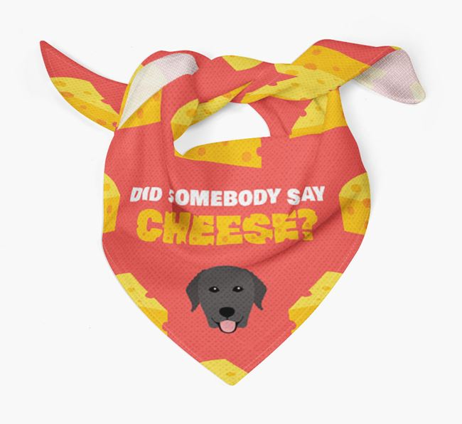 Cheese Bandana with Curly Coated Retriever Icon