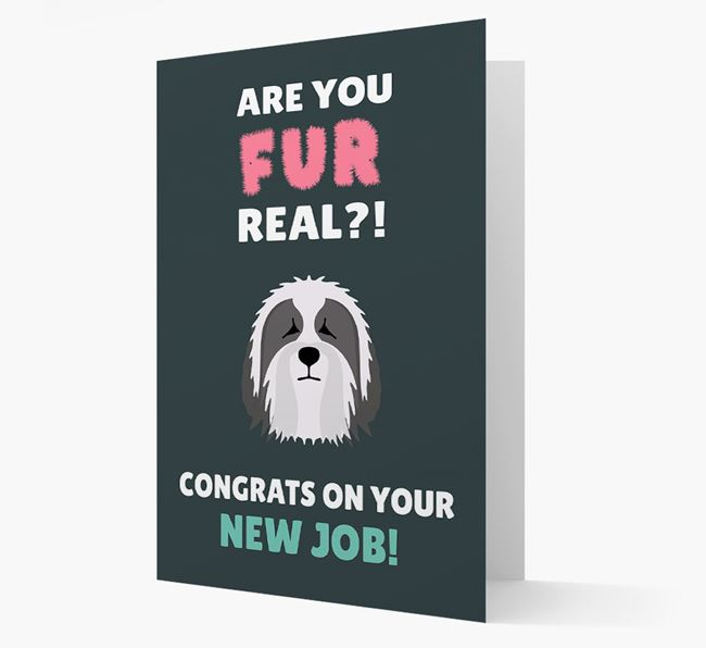 'Are you for real?! Congrats on your new job!' Card with Bearded Collie Icon