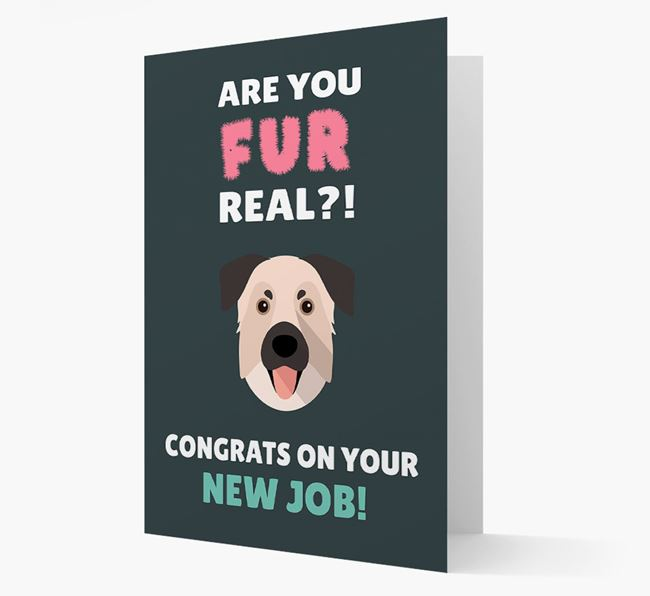 'Are you for real?! Congrats on your new job!' Card with Chinook Icon