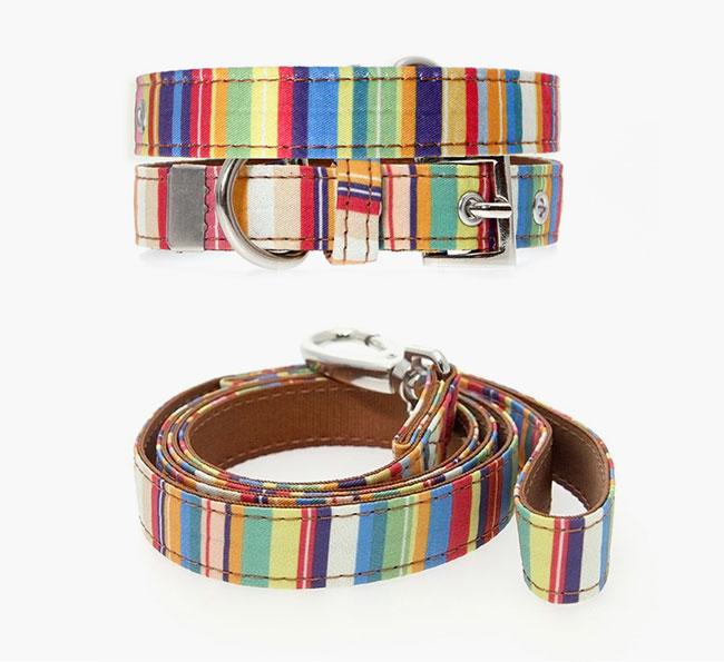 Urban Pup Henley Striped Fabric Collar & Lead Set