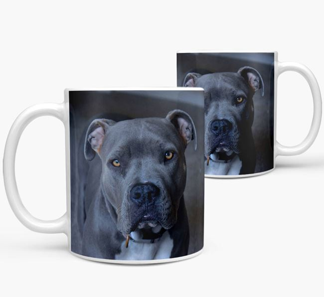 Mug with photo of your American Pit Bull Terrier