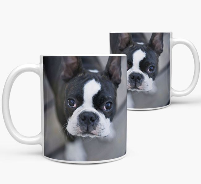 Mug with photo of your Boston Terrier