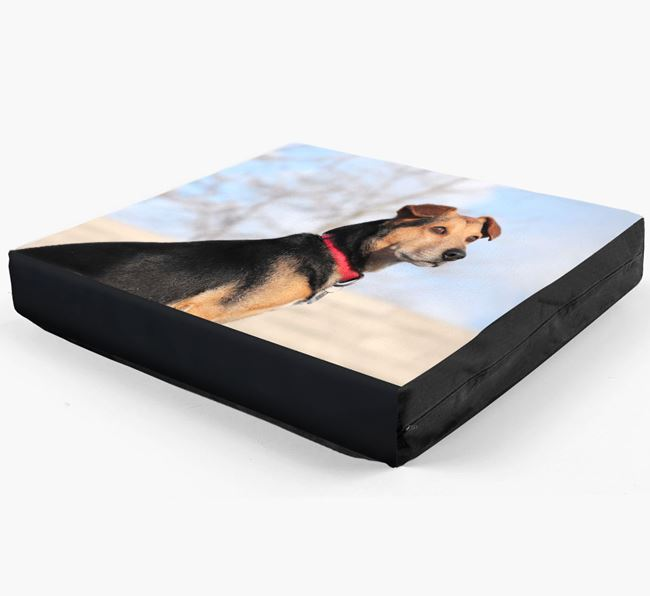 Plain Photo Upload Dog Bed