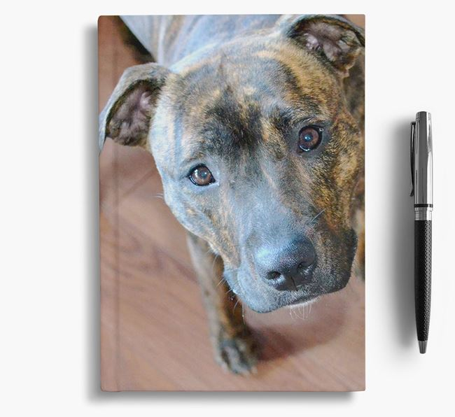 Notebook with photo of your Staffordshire Bull Terrier