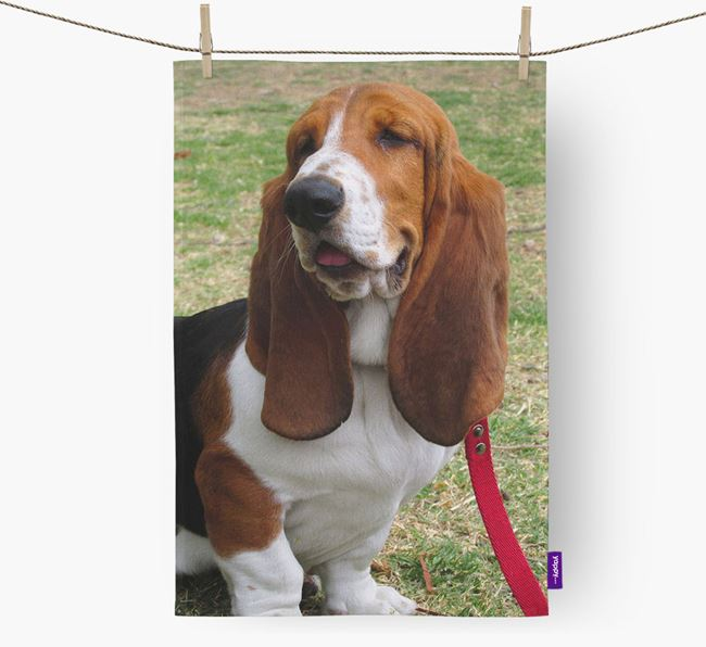 Dish Towel with photo of your Basset Hound