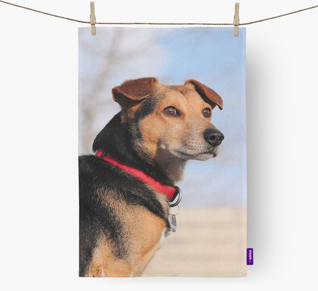 Dish Towel with photo of your Bedlington Whippet
