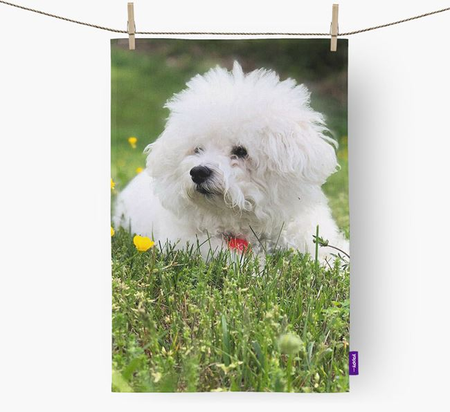 Dish Towel with photo of your Bichon Frise