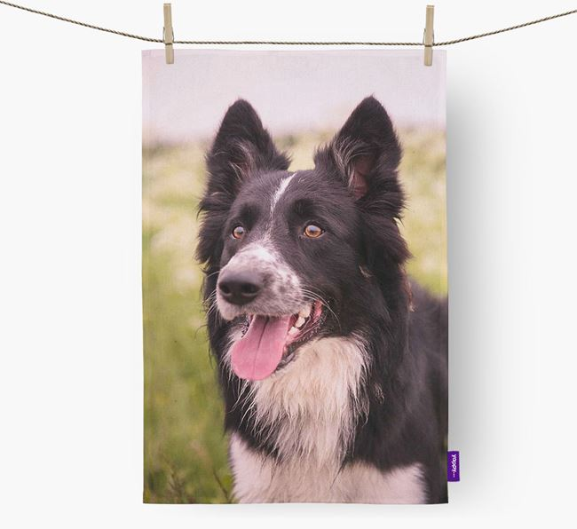 Dish Towel with photo of your Border Collie