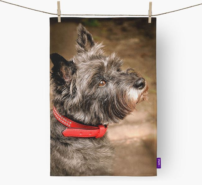 Dish Towel with photo of your Cairn Terrier