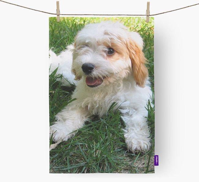 Dish Towel with photo of your Cavachon