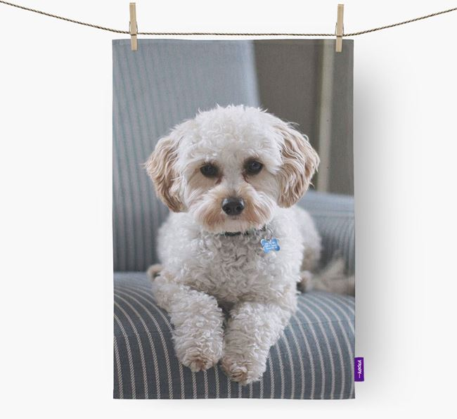Dish Towel with photo of your Cavapoo