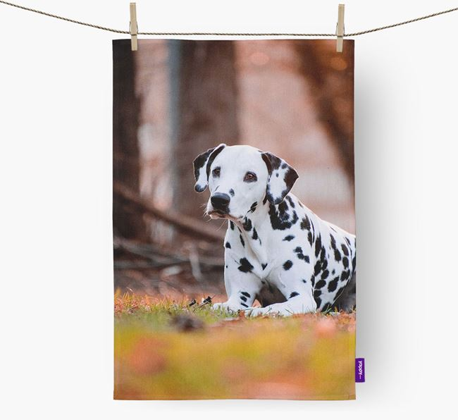 Tea Towel with photo of your Dalmatian