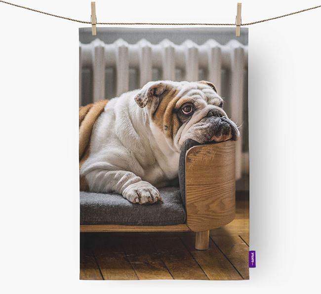 Dish Towel with photo of your English Bulldog