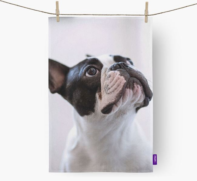 Dish Towel with photo of your French Bulldog