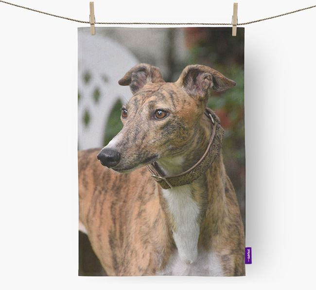 Dish Towel with photo of your Greyhound