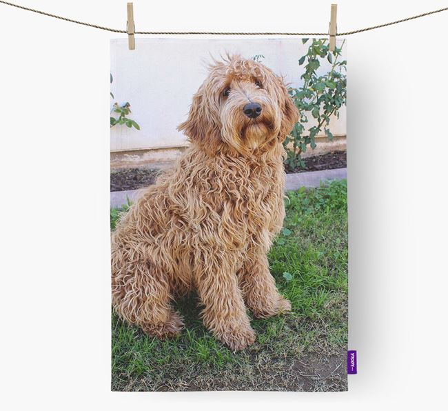Dish Towel with photo of your Labradoodle