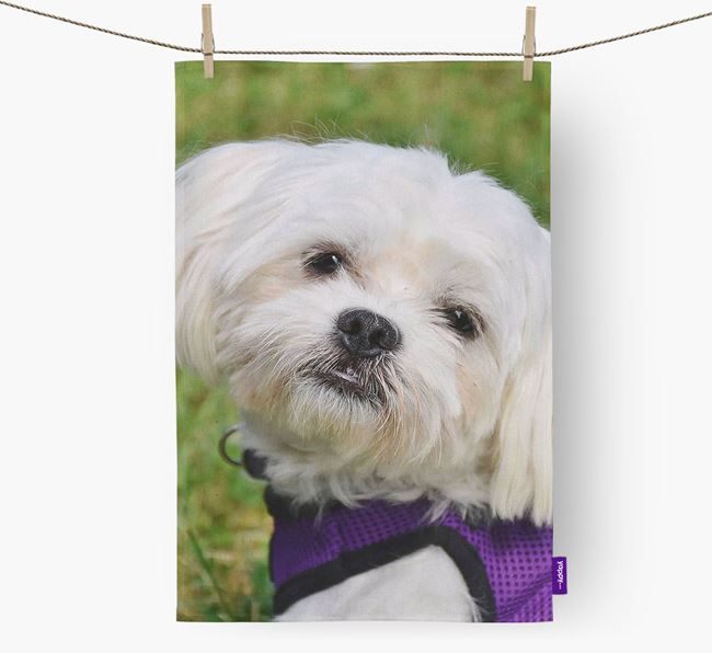 Dish Towel with photo of your Maltese