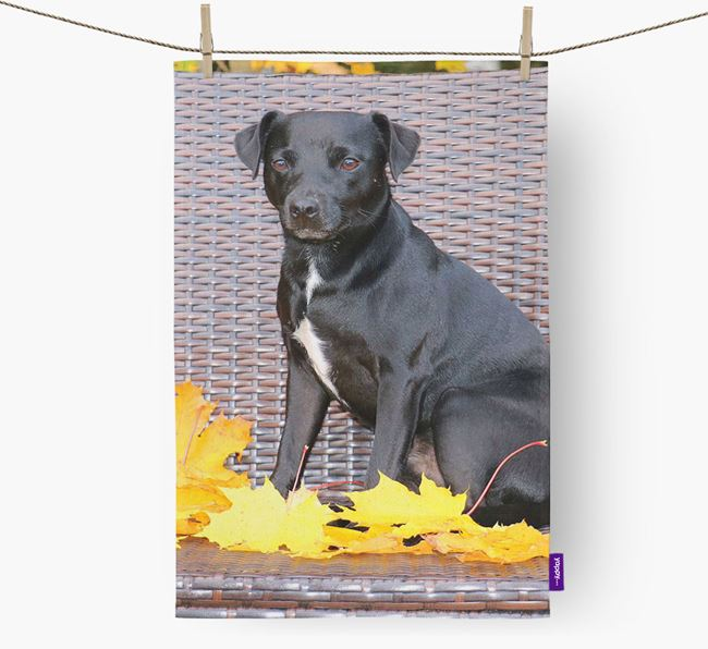 Dish Towel with photo of your Patterdale Terrier