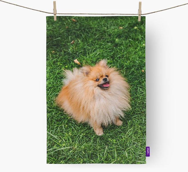 Dish Towel with photo of your Pomeranian