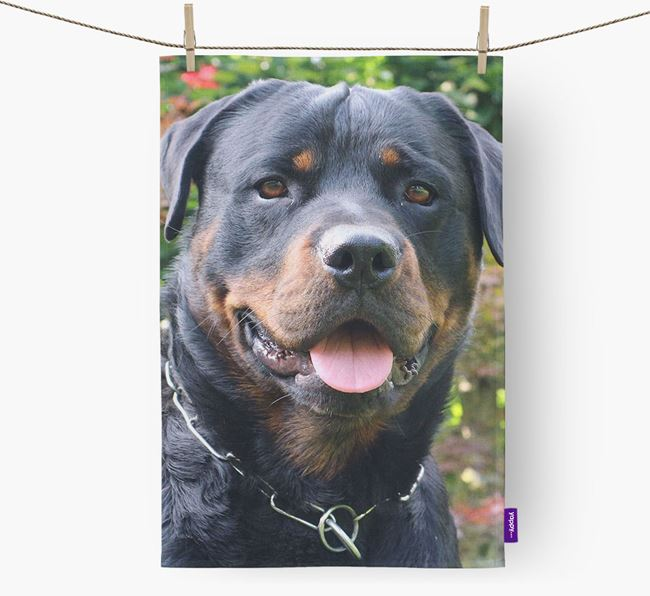 Dish Towel with photo of your Rottweiler