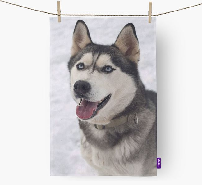 Dish Towel with photo of your Siberian Husky