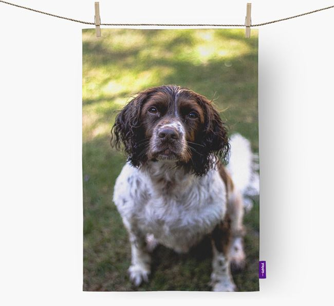 Dish Towel with photo of your Springer Spaniel
