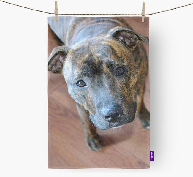 Dish Towel with photo of your Staffordshire Bull Terrier