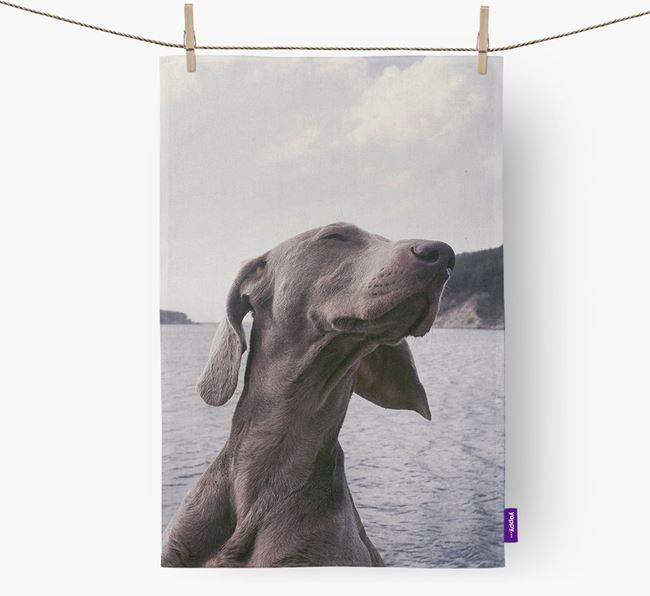 Dish Towel with photo of your Weimaraner