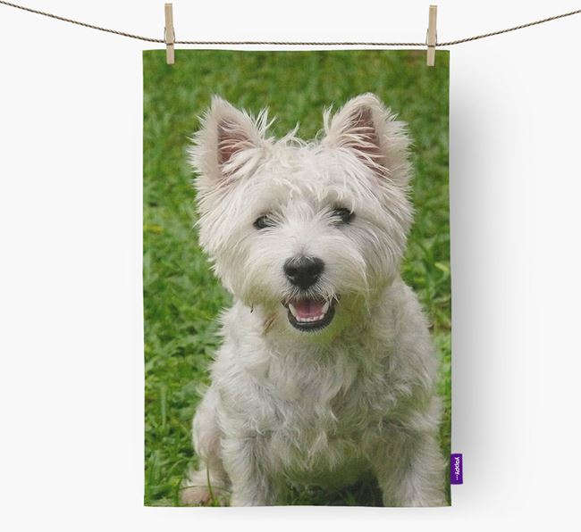 Dish Towel with photo of your West Highland White Terrier
