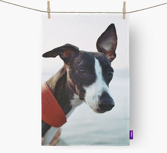 Dish Towel with photo of your Whippet