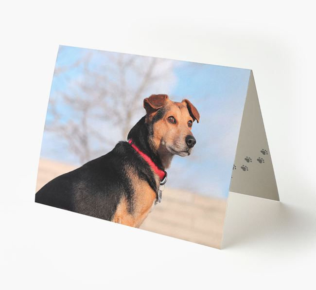 Photo Upload Landscape Card - Personalized for your Bearded Collie