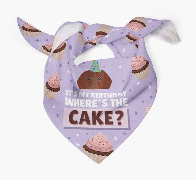 'Where's the Cake?' Birthday Bandana