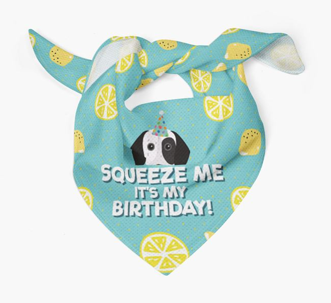 'Squeeze Me, It's My Birthday' Bandana