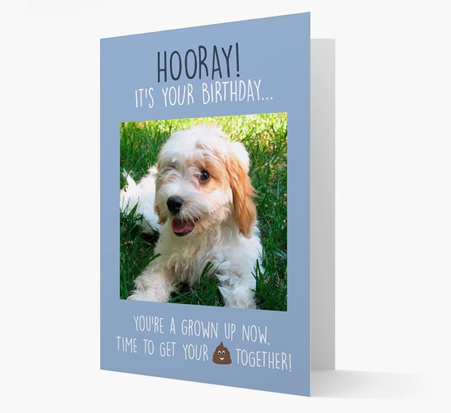 Photo Upload 'Hooray, it's your Happy Birthday' Card with you Cavachon Picture