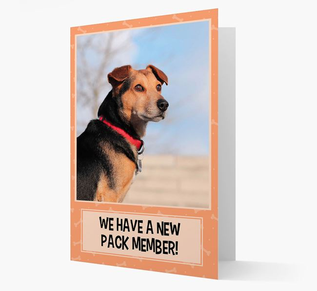 Photo Upload 'We have a new pack member' Card with Bearded Collie Picture