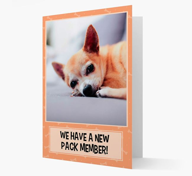 Photo Upload 'We have a new pack member' Card with Chihuahua Picture