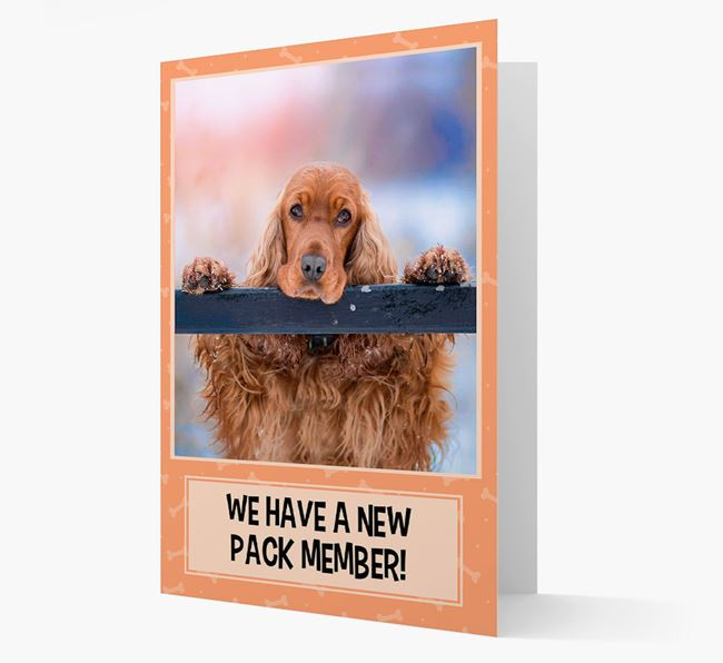 Photo Upload 'We have a new pack member' Card with Cocker Spaniel Picture