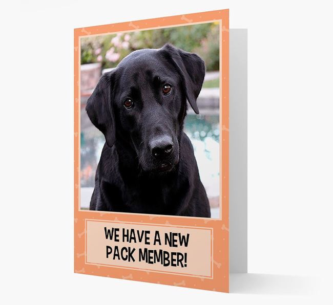 Photo Upload 'We have a new pack member' Card with Labrador Retriever Picture