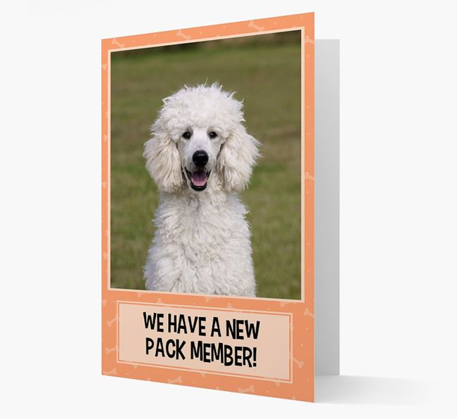 Photo Upload 'We have a new pack member' Card with Poodle Picture