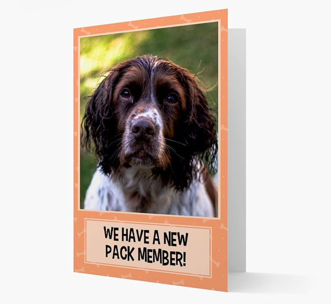 Photo Upload 'We have a new pack member' Card with Springer Spaniel Picture