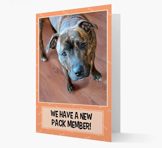 Photo Upload 'We have a new pack member' Card with Staffordshire Bull Terrier Picture