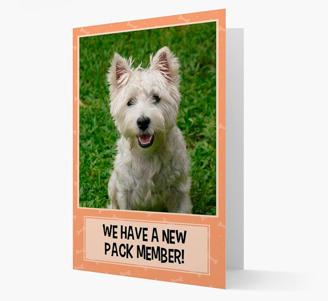 Photo Upload 'We have a new pack member' Card with West Highland White Terrier Picture