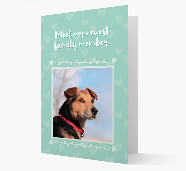 Photo Upload 'Meet our newest family member' Card with you Bearded Collie Picture